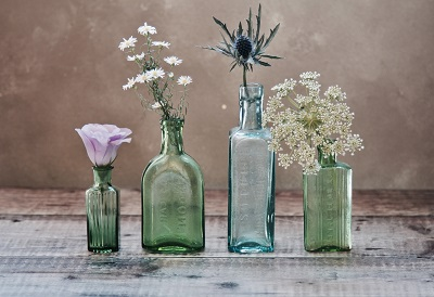 glass bottle and flower plant